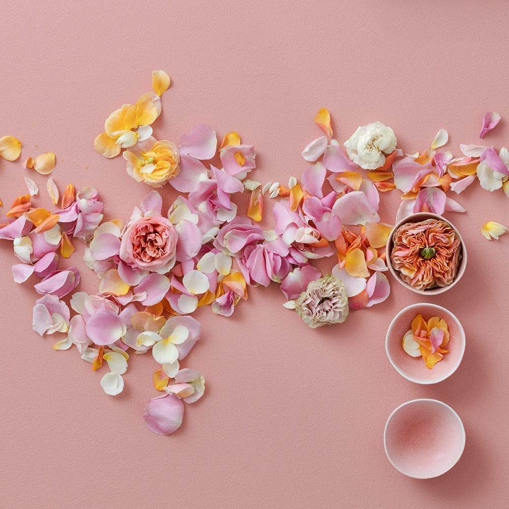 Frühlingsdeko Rosa Rosen Pink Blüten