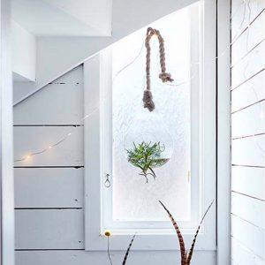 Hängende Vase aus Glas zum befestigen an der Decke, passend für Sukkulenten und Blumen. Blumenvasen im skandinavischen Stil für die Jungle Deko Zuhause
