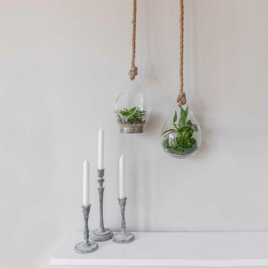 Hängevase aus Glas, die Sie mit einem Seil aufhängen können. Für Sukkulenten und Pflanzen. Blumenvasen im skandinavischen Stil für die Jungle Deko Zuhause. Hängende Wohndeko