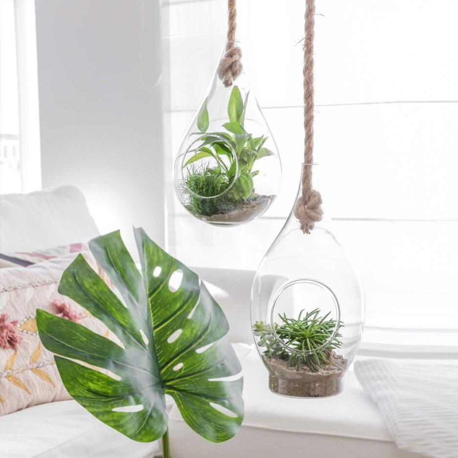 Hängevase aus Glas mit Seil zum Befestigen. Für Sukkulenten und Blumen. Blumenvasen im skandinavischen Stil für die Jungle Deko Zuhause. Hängende Wohndeko