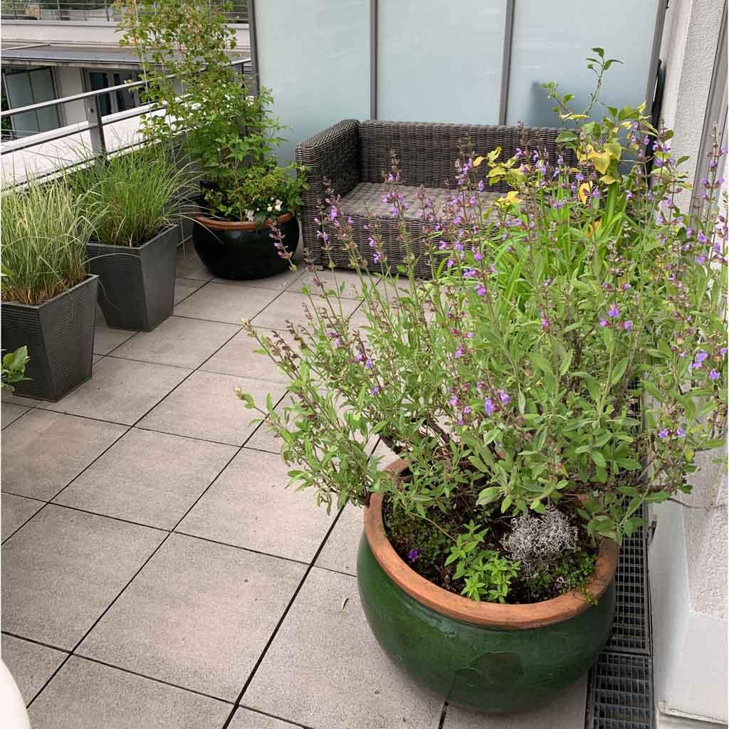 Balkon vor der Outdoor Deko. Terrasse ohne Outdoor Dekoration